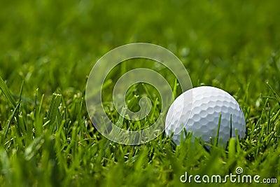 White golf ball on fairway close up