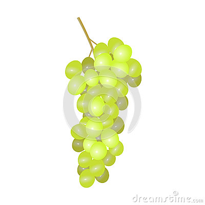White grapes. Stock Photo