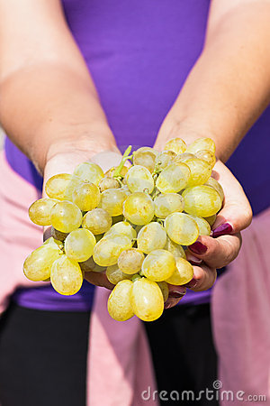 White grapes in female hands