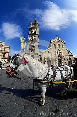 Free White Horse At Messina Cathedral Stock Photos - 66960643