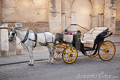 White Horse with Carriage. Sevilla. Spain