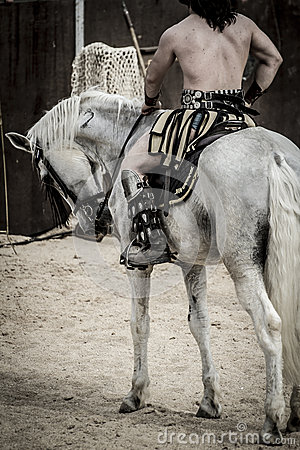 White horse, Roman chariot in a fight of gladiators, bloody circ