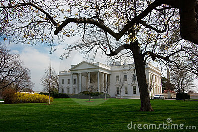 The White House in Spring
