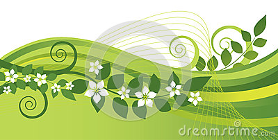 White jasmine flowers and green swirls banner