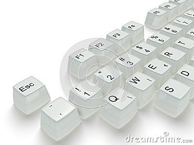 White key in a keyboard