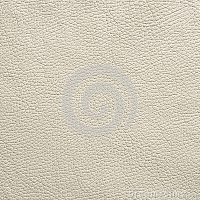 White Leather Grain Texture