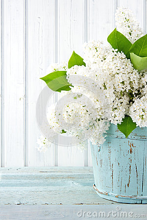 Free White Lilac Spring Flowers In A Blue Vase Stock Image - 32188271