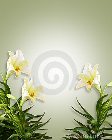 White Lilies Floral Easter Background