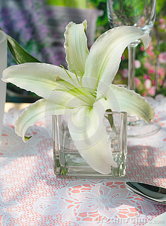 White lily decorate on dinning table