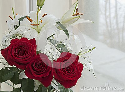 White lily and red rose