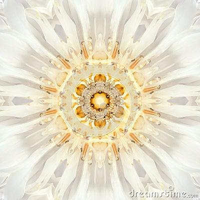 Free White Mandala Flower Center. Concentric Kaleidoscope Design Stock Image - 46234941