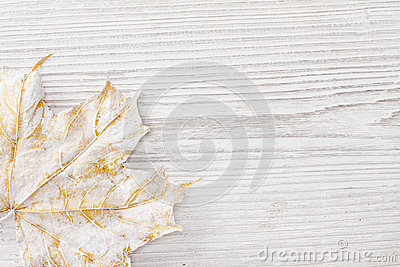 White maple leaf, wooden background