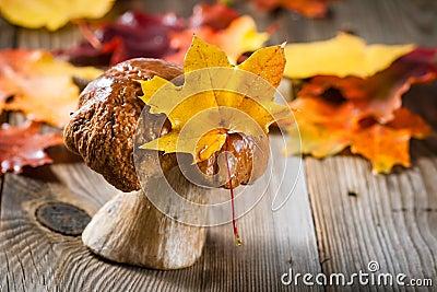 White Mushroom (cep)