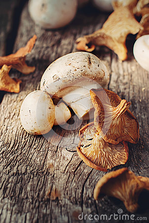 Free White Mushrooms And Dried Chanterelle Royalty Free Stock Image - 32470116