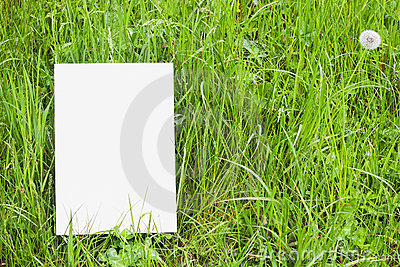 White paper card in green grass