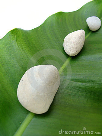 Free White Pebbles On Leaf - Natural Spa Stock Photo - 681260