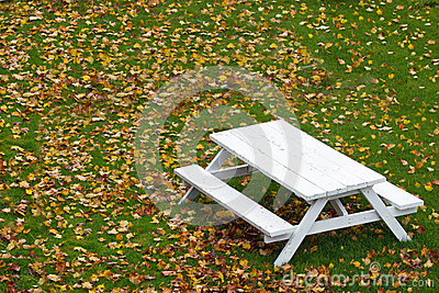 White Picnic Table