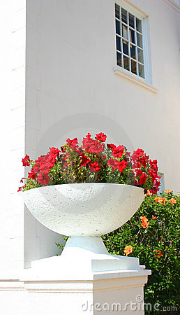 White pot with flowers