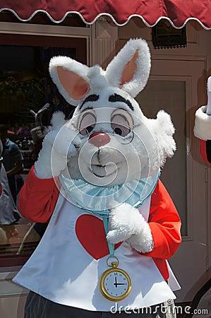 White Rabbit at Disneyland Editorial Stock Photo