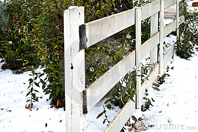 White Rail Fence/Snow