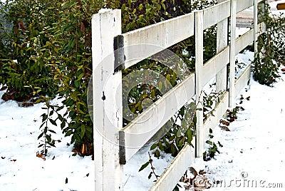 White Rail Fence/Snow