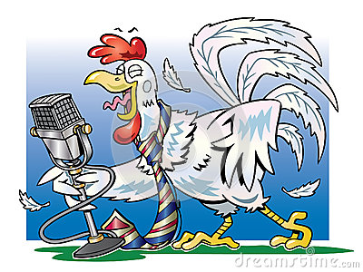 White rooster crowing into a microphone