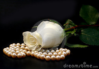 White Rose And Pearls