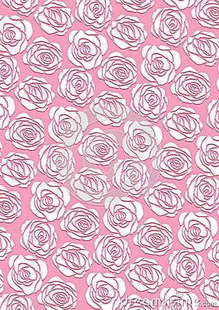 Royalty Free Stock Image: White rose wallpaper