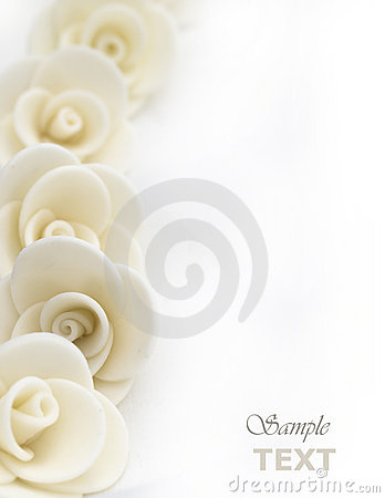 Free White Roses Background Royalty Free Stock Photography - 21865717