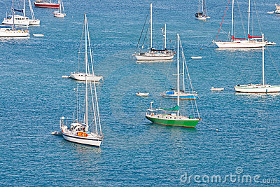 White Sailboats with One Green on Blue Water