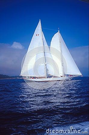 Free White Sailing Boat Stock Photography - 629272