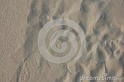 White sand beach background