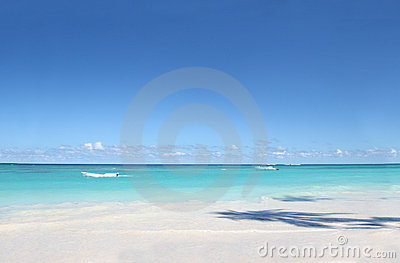 White Sand Beach and Ocean Background