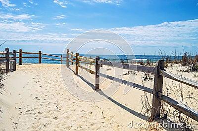 White Sand to the Beach