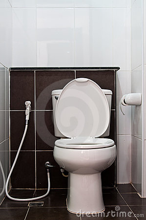 White sanitary wares in toilet