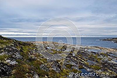 White sea landscape