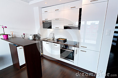 White and shiny kitchen interior
