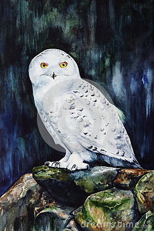Free White Snowy Owl In The Forest  Watercolor Royalty Free Stock Images - 94080369
