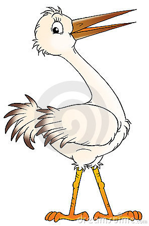 Free White Stork Stock Images - 1601514