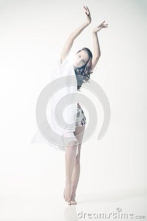 Free White Swan Stock Photography - 19308362