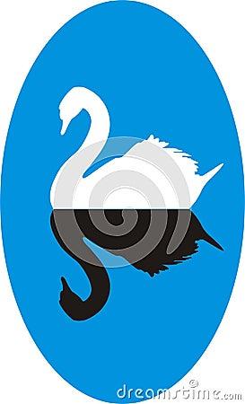 Free White Swan Stock Photo - 1932690