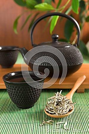 Free White Tea Stock Images - 8669804