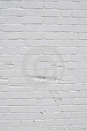 White texture wall