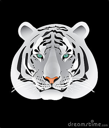 White tiger portrait illustration