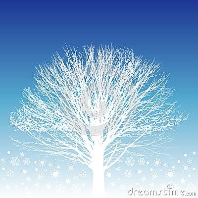 White Tree Illustration