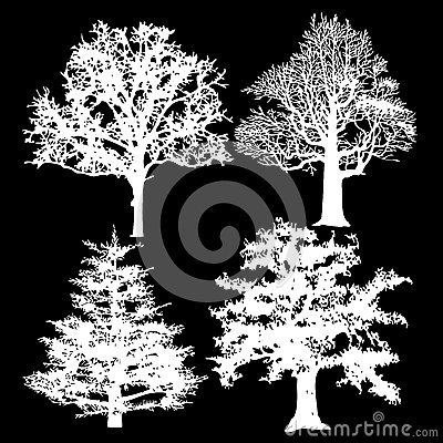 White trees on a black background