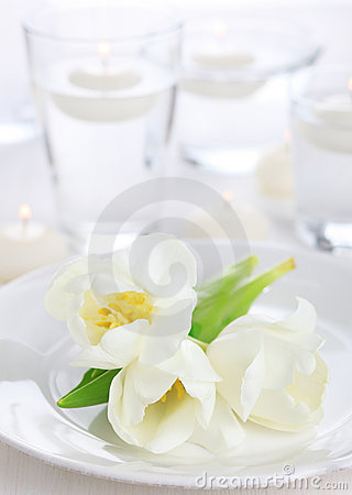 White tulip on white napkin
