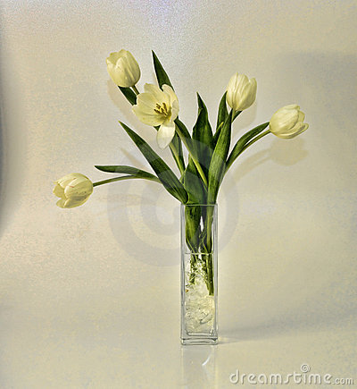 White tulips vase arrangement