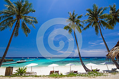 White umbrella and chairs under coconut tree