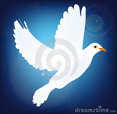 White vecor pigeon on blue background